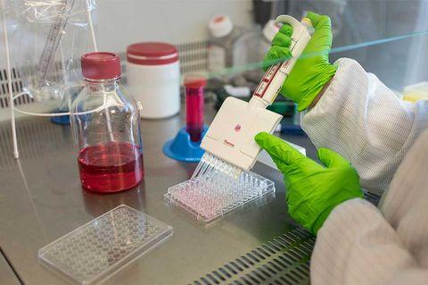 Analytiker spår godkännande även för Bioarctic