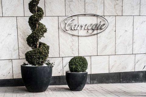 Carnegie: Små utsikter till högre bud på Sobi