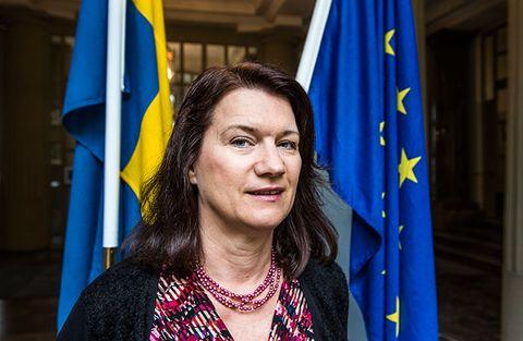 Sveriges EU- och Handelsminister Ann Linde är oroad.